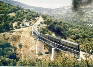 Omnibus Linares-Pte. Genil